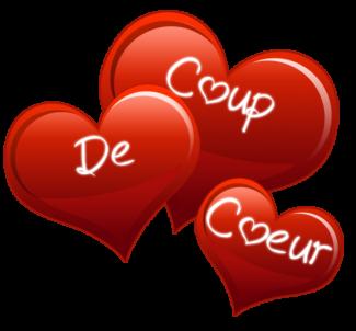 Défi 2020 de everalice Article-coup-de-coeur-le-club-des-audacieuxr-e1510911574106